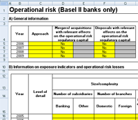 QIS spreadsheet depicting Operational risk